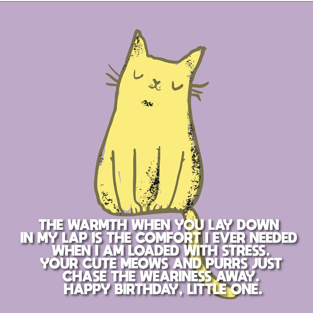 happy-birthday-cat-birthday-wishes-for-cats-01