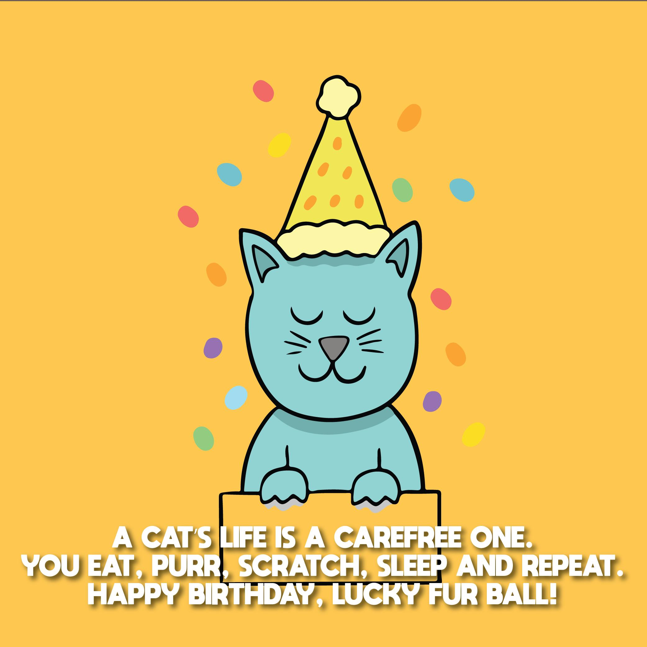 Outstanding 200 Birthday Wishes For Cats Top Happy Birthday Wishes Personalised Birthday Cards Epsylily Jamesorg
